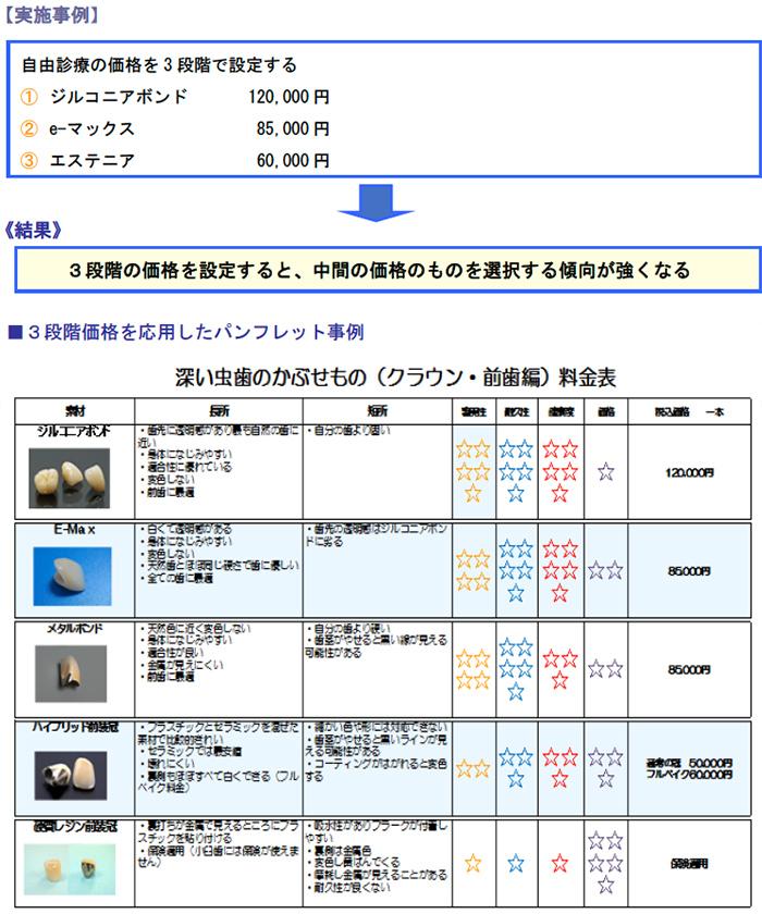 実施事例、3段階価格を応用したパンフレット事例
