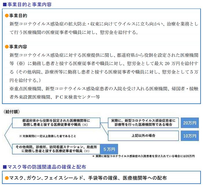 事業目的と事業内容、マスク等の防護関連品の確保と配布